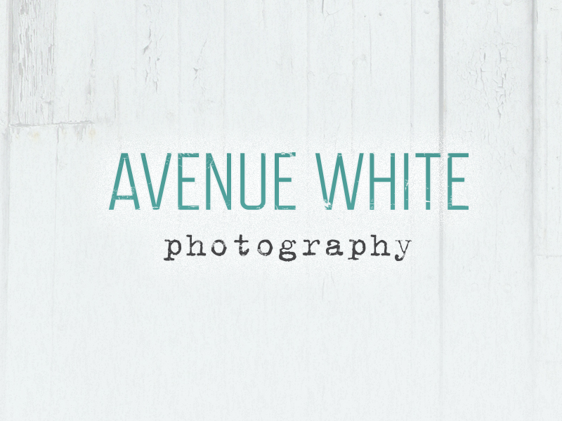 Screenshot of Avenue White Photography logo design.