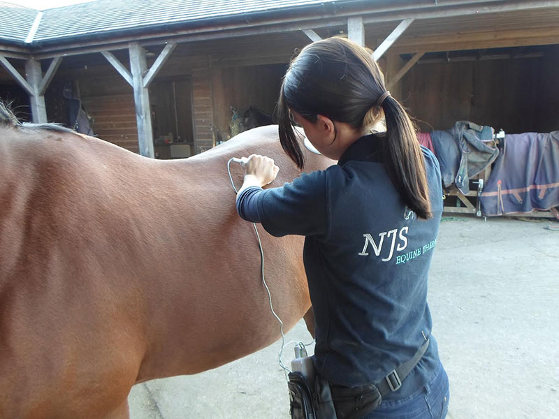 Photo of NJS Equine Therapy uniform design.