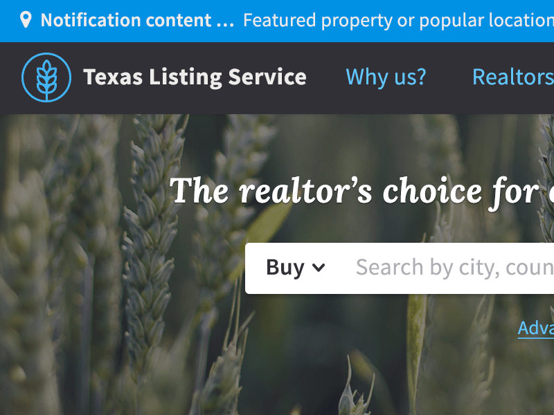 Screenshot of Property Listing Service web design.